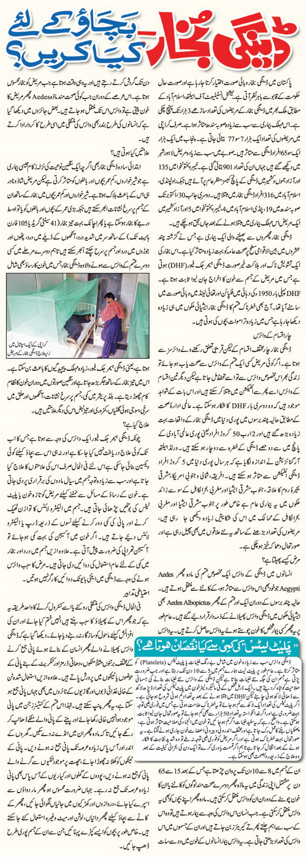 Smoking essay in urdu